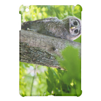 Cute Baby Owl Case For The iPad Mini