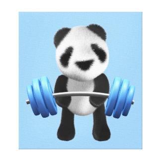 Cute baby panda bear powerlifter in 3d (editable) canvas print
