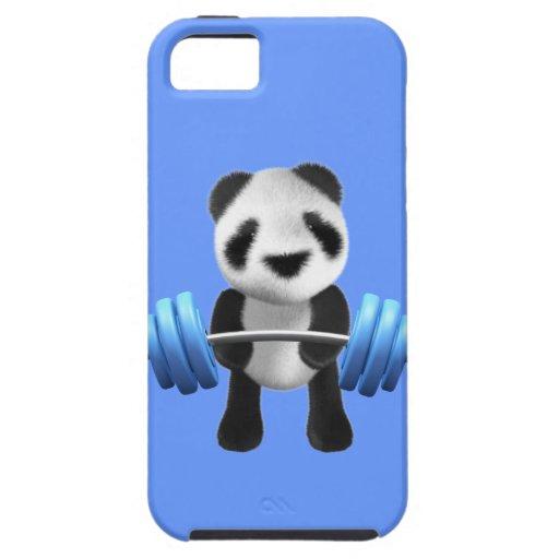 Cute baby panda bear powerlifter in 3d (editable) iPhone 5 covers