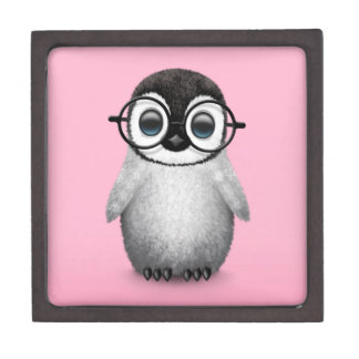 Cute Baby Penguin Wearing Eye Glasses on Pink Gift Box