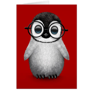 Cute Baby Penguin Wearing Eye Glasses on Red Cards