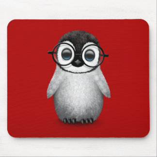 Cute Baby Penguin Wearing Eye Glasses on Red Mouse Pad