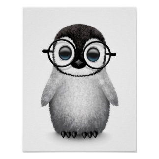 Cute Baby Penguin Wearing Eye Glasses on White Poster