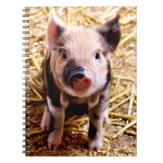 Cute Baby Pig Spiral Notebook