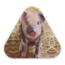 Cute Baby Piglet Farm Animals Babies Bluetooth Speaker