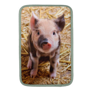 Cute Baby Piglet Farm Animals Babies Sleeve For MacBook Air