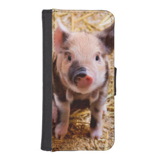 Cute Baby Piglet Farm Animals Babies iPhone SE/5/5s Wallet Case