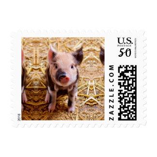 Cute Baby Piglet Farm Animals Babies Postage