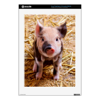 Cute Baby Piglet Farm Animals Babies PS3 Decals
