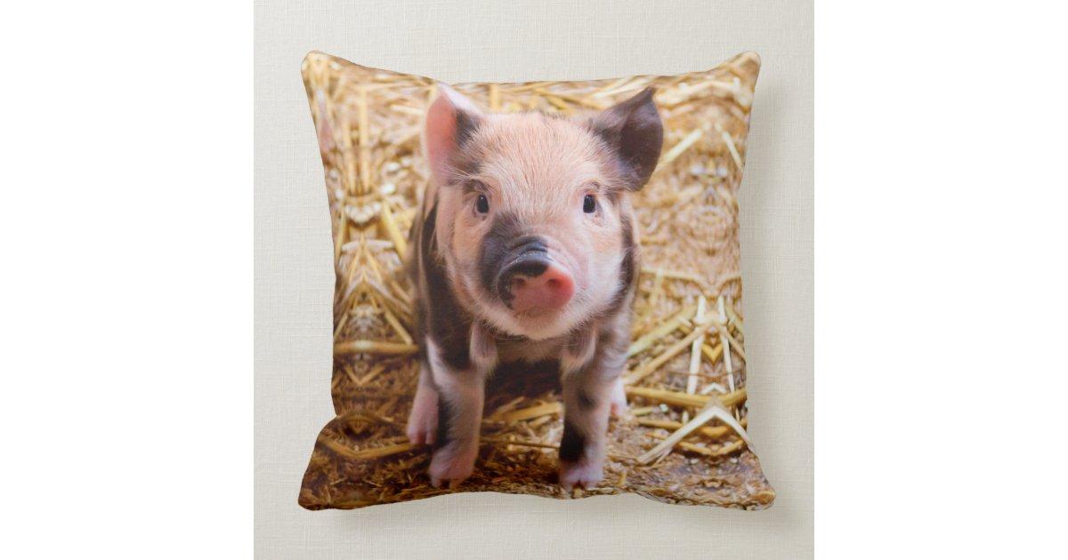 Cute Baby Piglet Farm Animals Babies Throw Pillow Zazzle