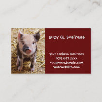 Cute Baby Piglet Farm Animals Barnyard Babies Business Card