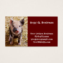 Cute Baby Piglet Farm Animals Barnyard Babies Business Card