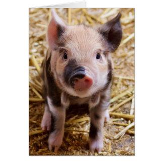 Cute Baby Piglet Farm Animals Barnyard Babies Card