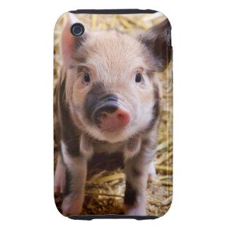 Cute Baby Piglet Farm Animals Barnyard Babies Tough iPhone 3 Case