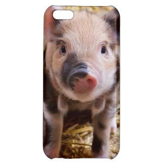 Cute Baby Piglet Farm Animals Barnyard Babies Case For iPhone 5C