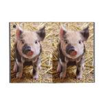 Cute Baby Piglet Farm Animals Barnyard Babies Cover For iPad Mini