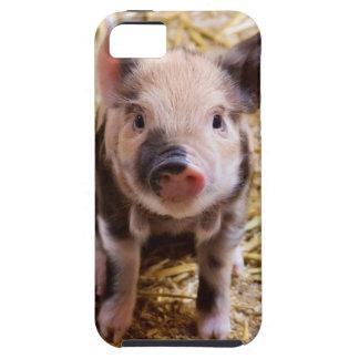 Cute Baby Piglet Farm Animals Barnyard Babies iPhone SE/5/5s Case