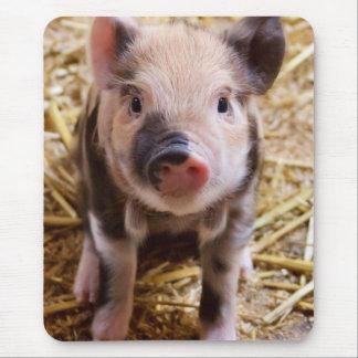 Cute Baby Piglet Farm Animals Barnyard Babies Mouse Pad