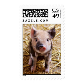 Cute Baby Piglet Farm Animals Barnyard Babies Stamps