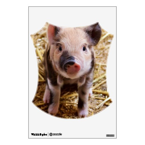 Cute Baby Piglet Farm Animals Barnyard Babies Wall Decal