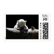 Cute Baby Polar Bear Cub on Log Animal Stamp