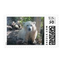 Cute Baby Polar Bear Postage