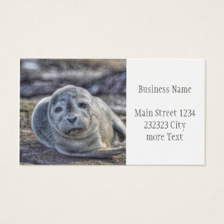cute baby seal business card