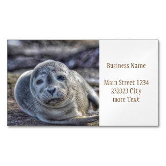 cute baby seal magnetic business card