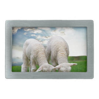 Cute Baby Sheep in a Field with Beautiful Puffy Cl Rectangular Belt Buckle