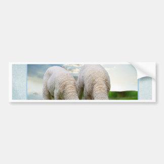 Cute Baby Sheep in a Field with Beautiful Puffy Cl Car Bumper Sticker
