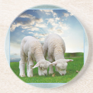 Cute Baby Sheep in a Field with Beautiful Puffy Cl Beverage Coasters