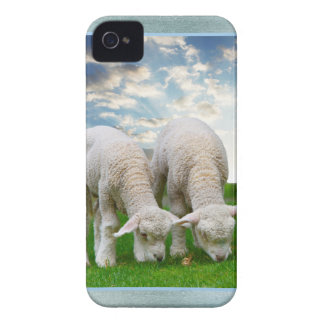 Cute Baby Sheep in a Field with Beautiful Puffy Cl iPhone 4 Cover