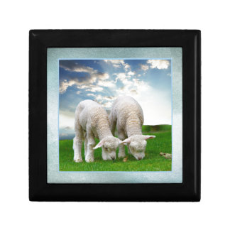 Cute Baby Sheep in a Field with Beautiful Puffy Cl Trinket Boxes