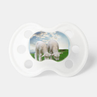 Cute Baby Sheep in a Field with Beautiful Puffy Cl Pacifier