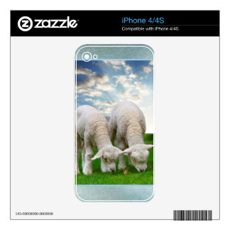 Cute Baby Sheep in a Field with Beautiful Puffy Cl Skin For iPhone 4S