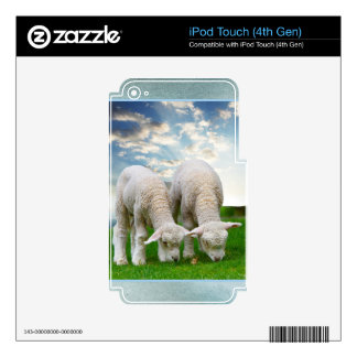 Cute Baby Sheep in a Field with Beautiful Puffy Cl iPod Touch 4G Skin