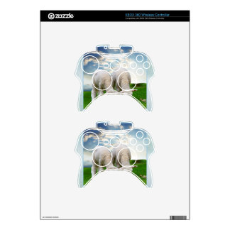 Cute Baby Sheep in a Field with Beautiful Puffy Cl Xbox 360 Controller Decal