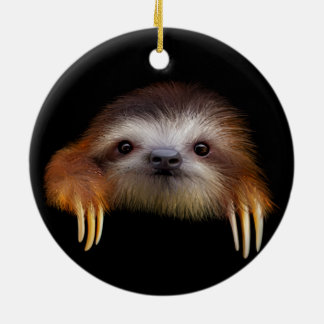 Cute Baby Sloth Hanging Ornament