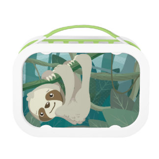 Cute Baby Sloth on a Branch Lunch Box