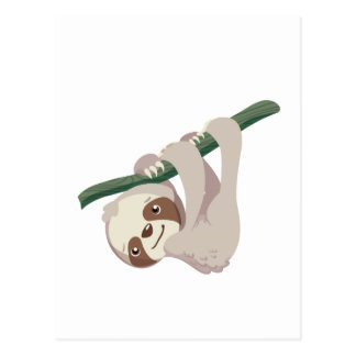 Cute Baby Sloth on a Branch Postcard