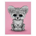 Cute Baby Snow Leopard Cub on Pink Poster