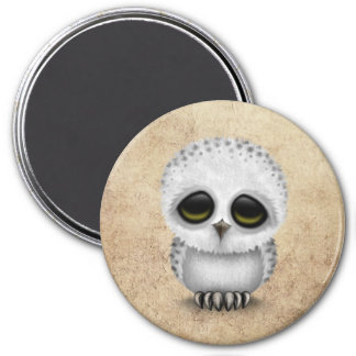 Cute Baby Snowy Owl Chic on Aged Texture 3 Inch Round Magnet