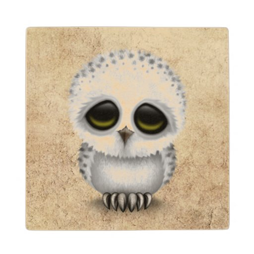 Baby Snowy Owl Gifts - T-Shirts, Art, Posters & Other Gift Ideas ...