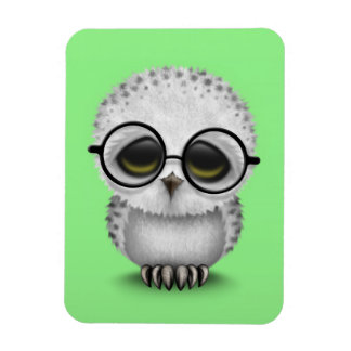 Cute Baby Snowy Owl Wearing Glasses on Green Magnet