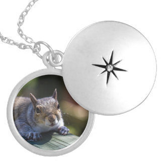 Cute Baby Squirrel Nature Photography Locket Necklace