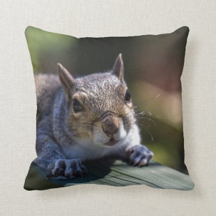 Cute Baby Squirrel Nature Photography Throw Pillows