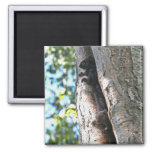Cute Baby Squirrels 2 Inch Square Magnet