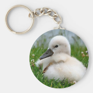 Cute Baby Swan - Keychain