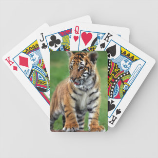 Cute baby Tiger cub Bicycle Playing Cards