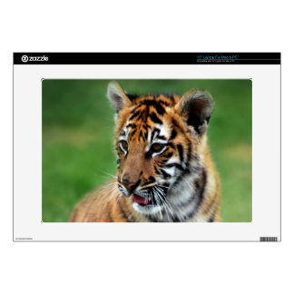 """Cute baby Tiger cub 15"""" Laptop Decal"""